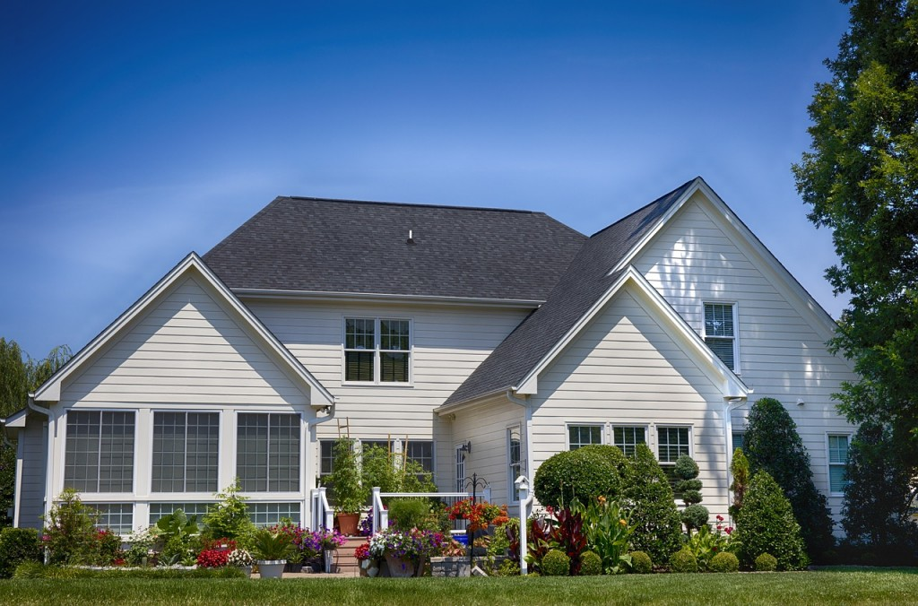 landscaping to increase property value