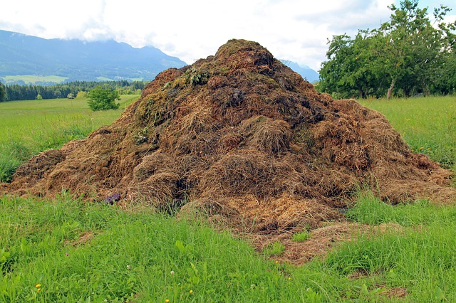 benefits of compost mulch