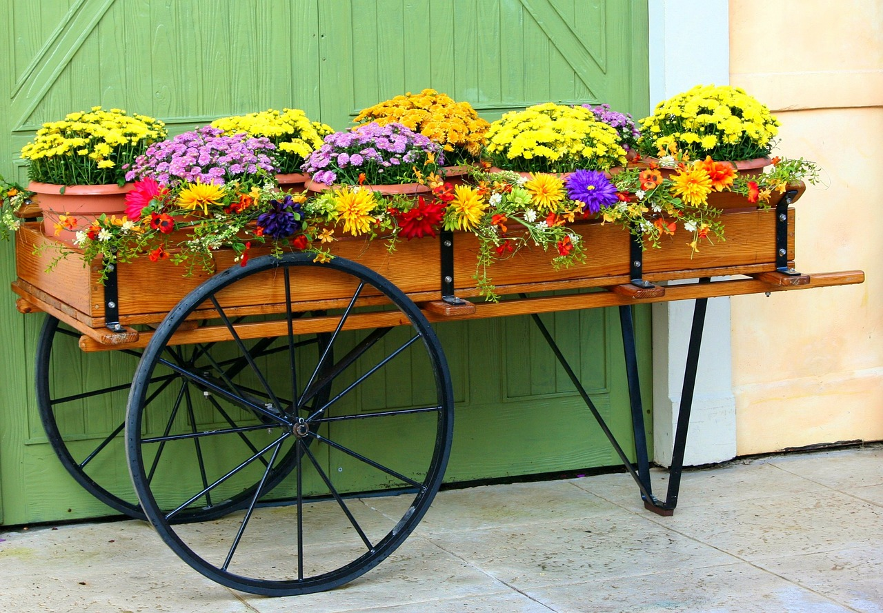 7 Creative Gardening Tips For Renters Wellers Hill Hardware