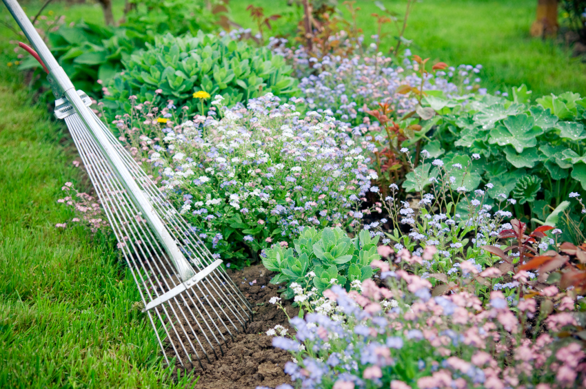 how to stop weeds from growing in your garden